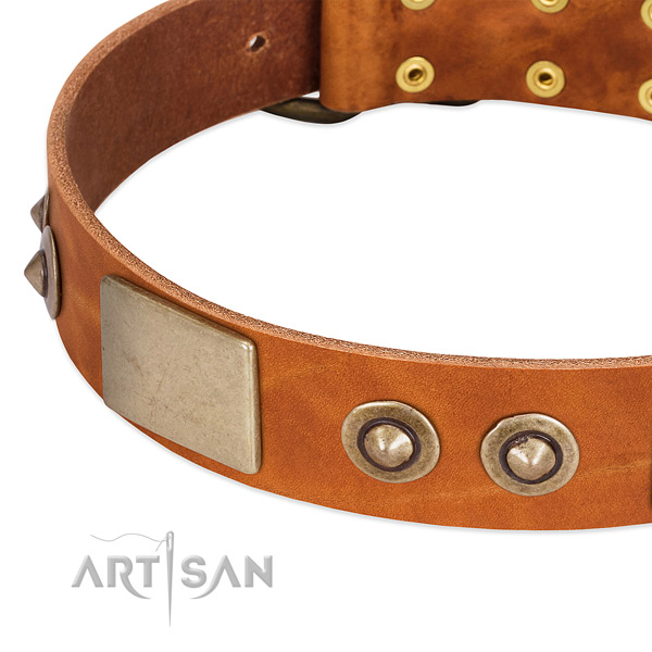 Reliable studs on natural genuine leather dog collar for your dog