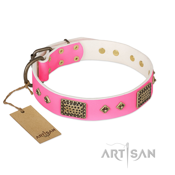 Easy wearing genuine leather dog collar for walking your doggie