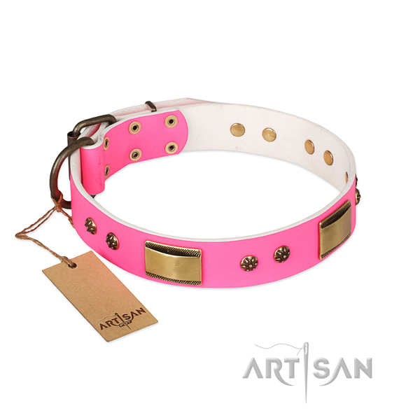 Stylish genuine leather collar for your dog