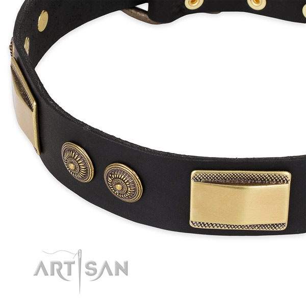 Studded natural genuine leather collar for your impressive pet