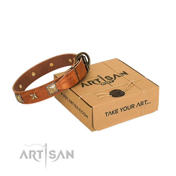 Amazing full grain genuine leather collar for your stylish canine