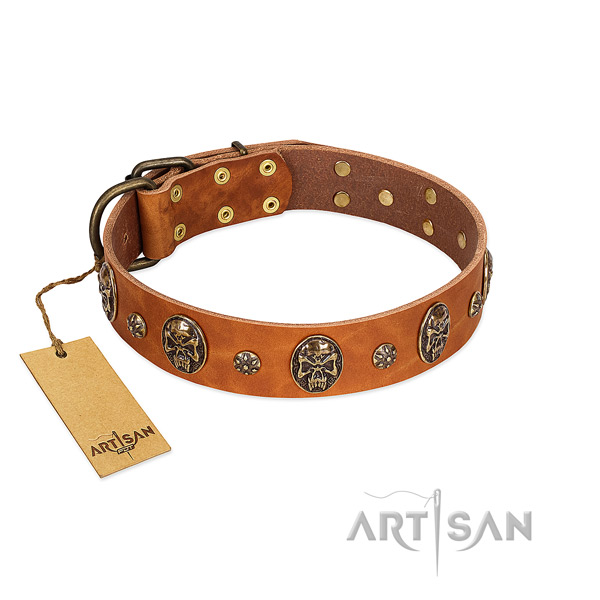 Studded full grain natural leather collar for your four-legged friend