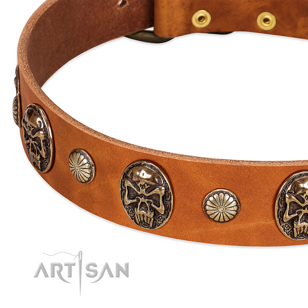 Rust-proof studs on natural genuine leather dog collar for your canine