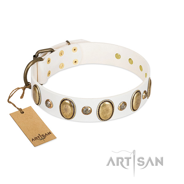 Genuine leather dog collar of best quality material with inimitable adornments