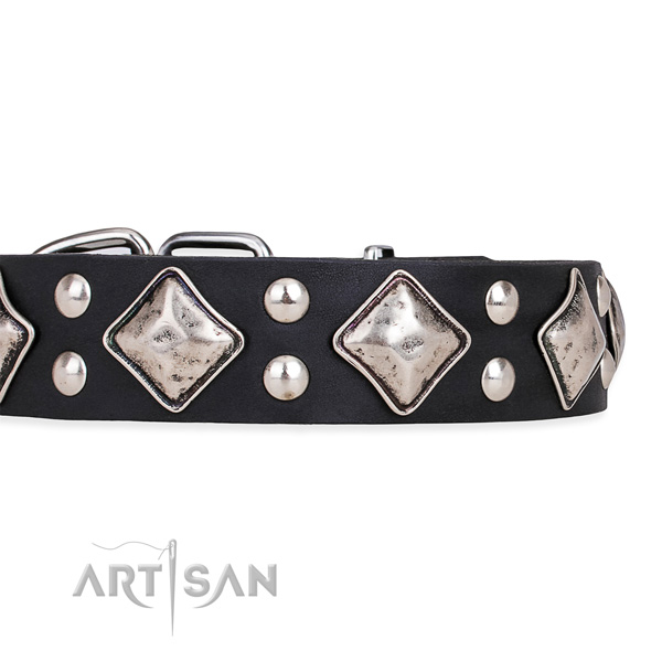 Natural leather dog collar with trendy rust-proof decorations