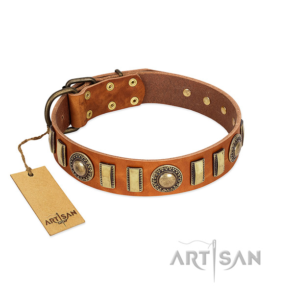 Fine quality full grain genuine leather dog collar with corrosion resistant fittings