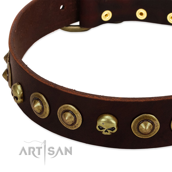 Stunning embellishments on full grain genuine leather collar for your dog