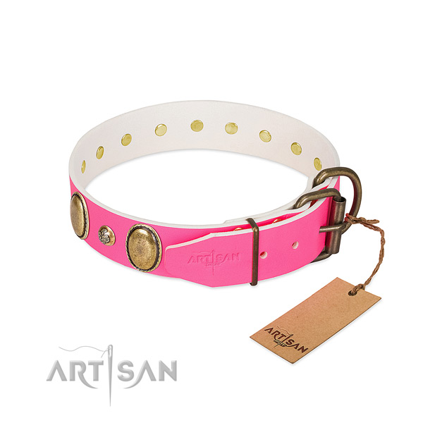 Everyday walking quality full grain leather dog collar