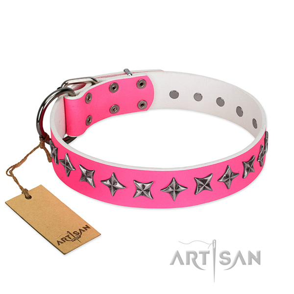 Durable full grain leather dog collar with awesome studs
