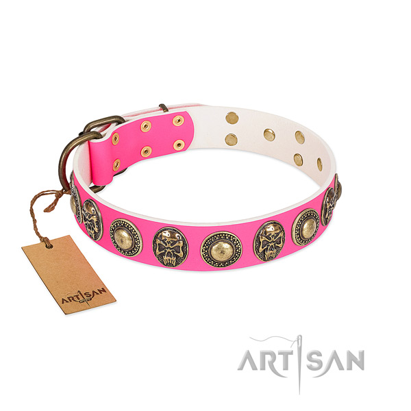 Easy wearing leather dog collar for walking your dog