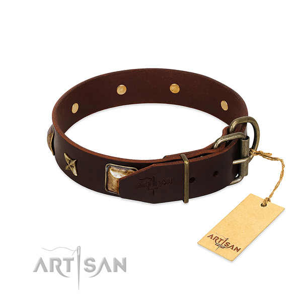 Leather dog collar with corrosion resistant fittings and decorations