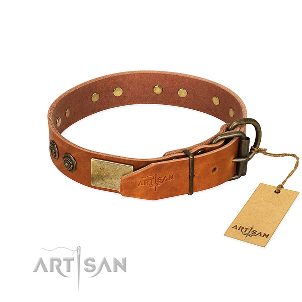 Corrosion resistant hardware on genuine leather collar for everyday walking your doggie