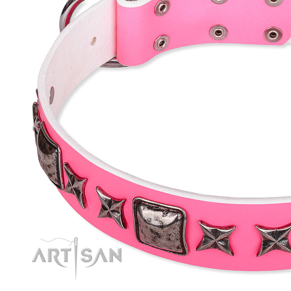 Daily use studded dog collar of finest quality full grain leather