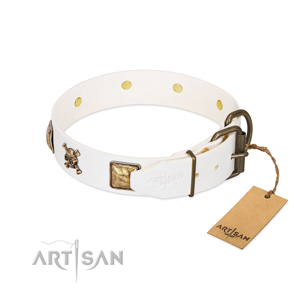 Comfy wearing leather dog collar with impressive adornments