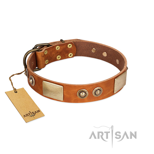 Adjustable full grain leather dog collar for daily walking your canine