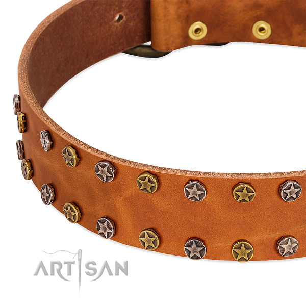 Comfortable wearing natural leather dog collar with incredible embellishments
