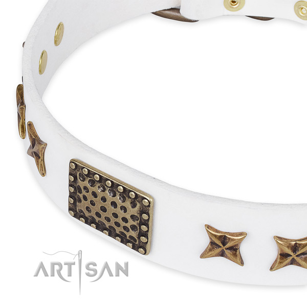 Full grain leather collar with rust-proof fittings for your beautiful dog