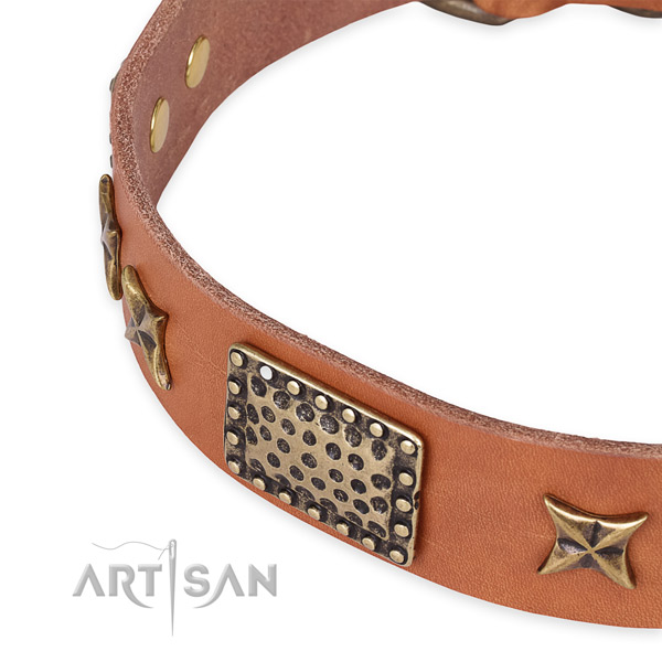 Full grain genuine leather collar with rust resistant traditional buckle for your handsome four-legged friend