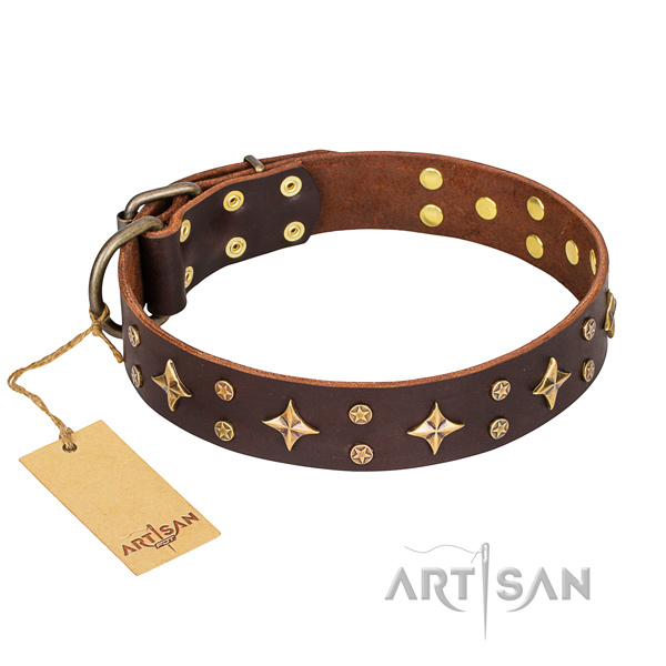 Stylish walking dog collar of durable full grain leather with studs