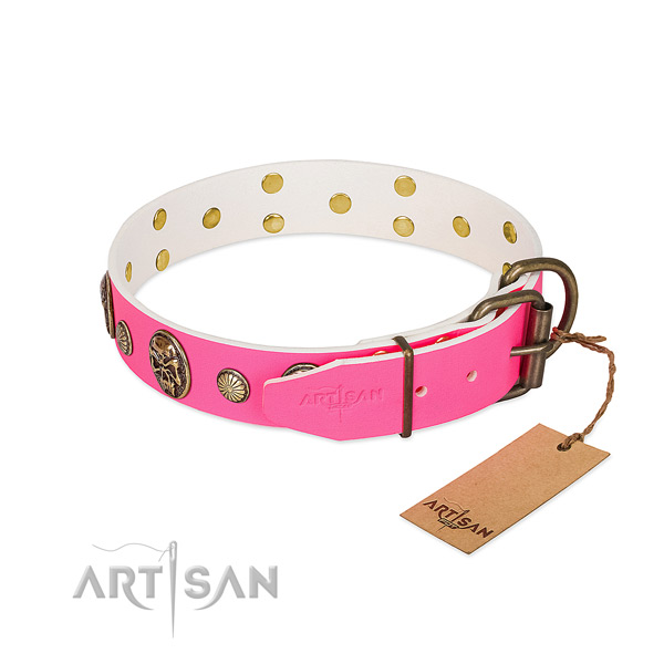 Corrosion resistant embellishments on leather dog collar for your canine