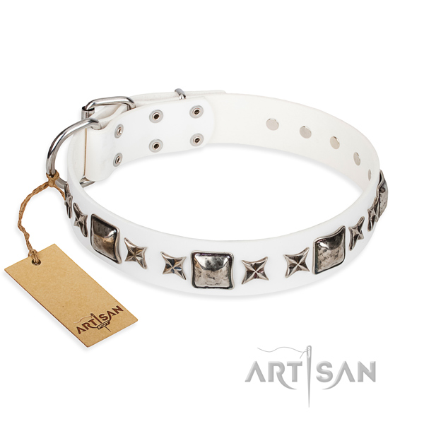 Comfy wearing dog collar of reliable full grain leather with studs