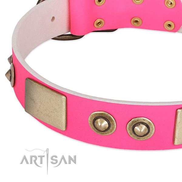 Corrosion proof studs on full grain genuine leather dog collar for your canine