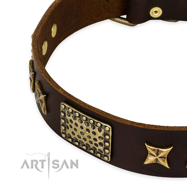 Genuine leather collar with reliable hardware for your attractive doggie