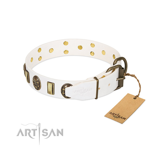 Corrosion resistant D-ring on full grain natural leather collar for stylish walking your four-legged friend