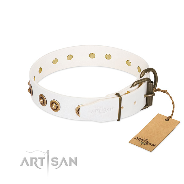Durable D-ring on leather dog collar for your dog