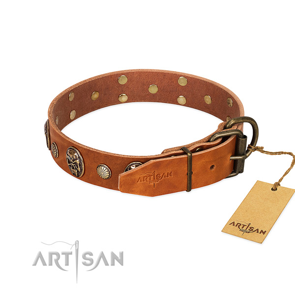 Rust resistant D-ring on full grain leather collar for basic training your doggie