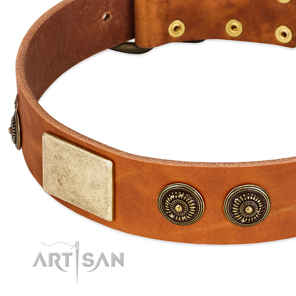 Unusual dog collar crafted for your impressive doggie