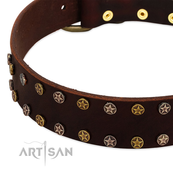 Comfortable wearing full grain genuine leather dog collar with impressive embellishments