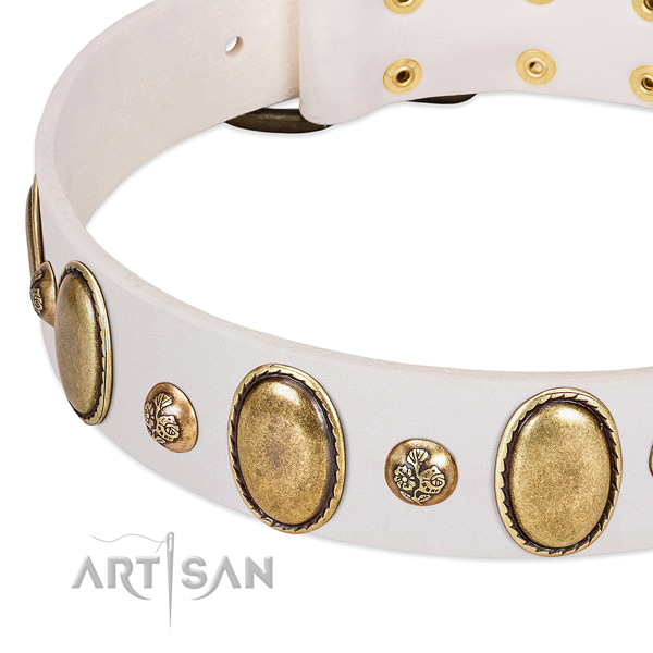 Full grain natural leather dog collar with stylish design embellishments