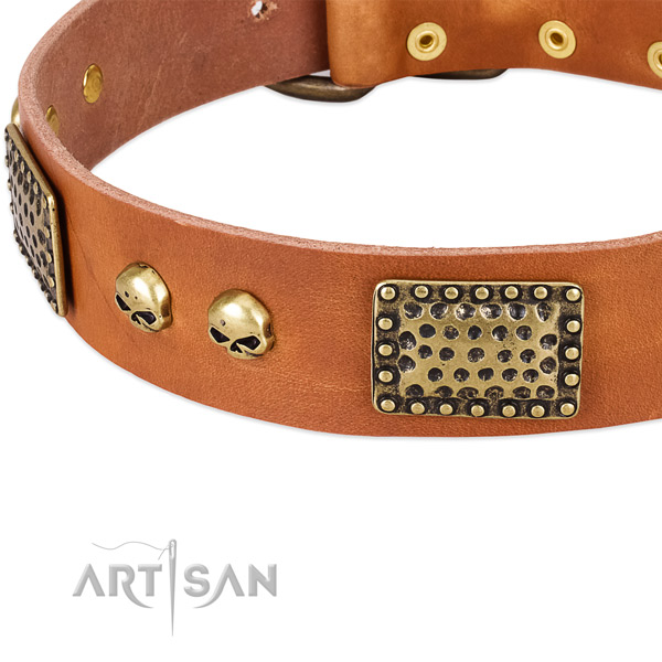 Rust-proof hardware on full grain leather dog collar for your canine