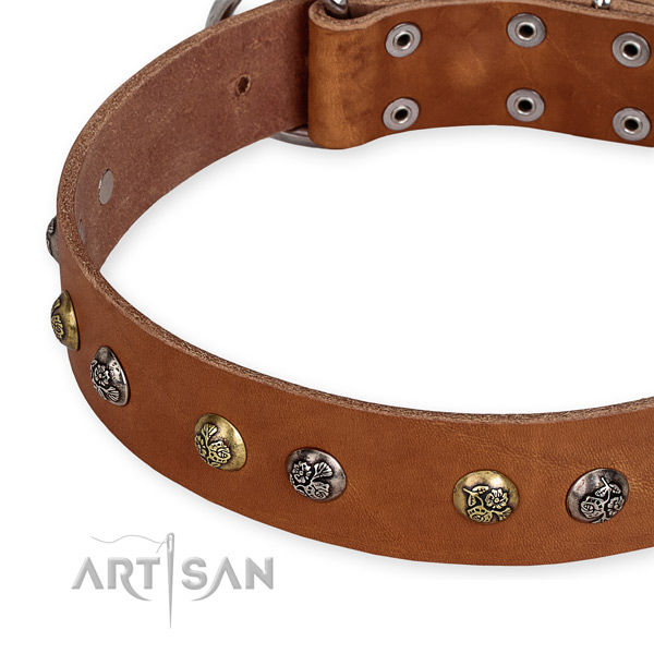 Genuine leather dog collar with extraordinary reliable embellishments