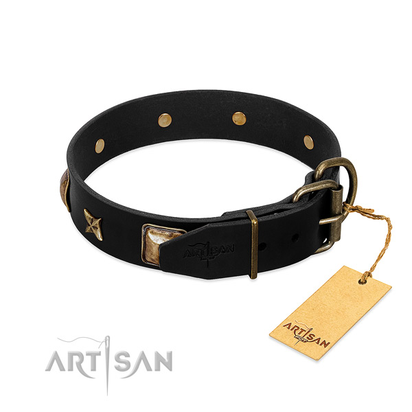 Rust resistant hardware on leather collar for everyday walking your dog