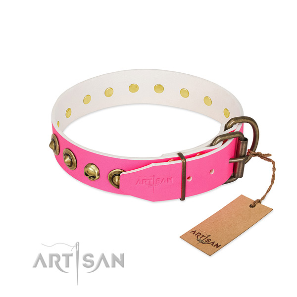 Genuine leather collar with trendy embellishments for your dog