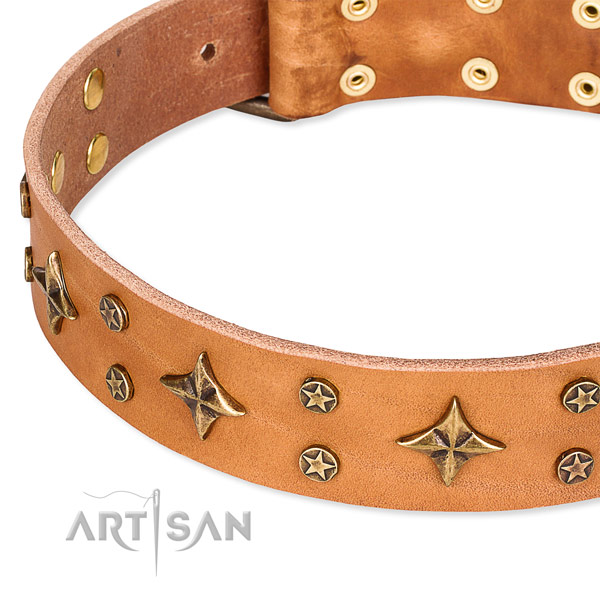Walking decorated dog collar of durable full grain genuine leather