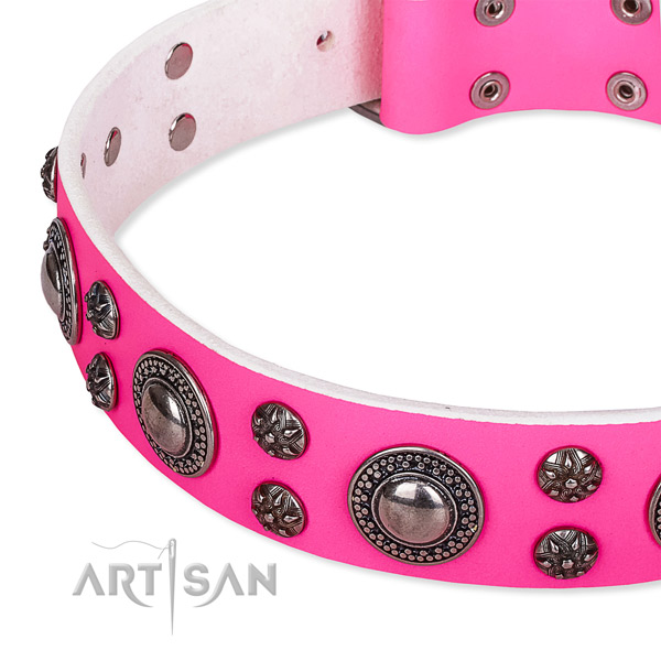 Comfortable wearing embellished dog collar of strong full grain natural leather