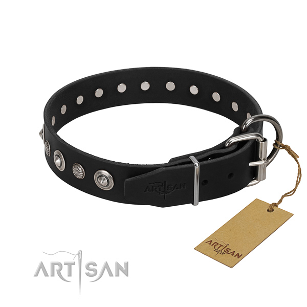 Top notch full grain leather dog collar with unusual adornments