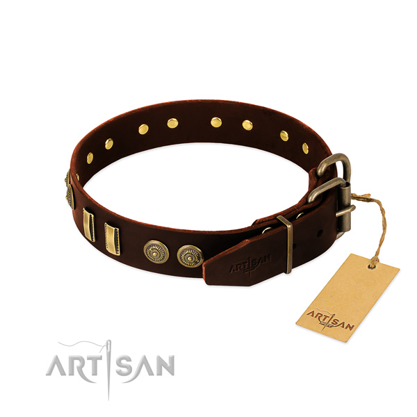 Rust-proof embellishments on genuine leather dog collar for your pet