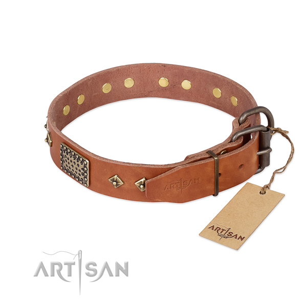 Full grain leather dog collar with strong buckle and studs