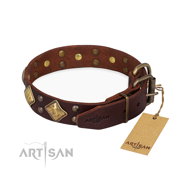 Natural leather dog collar with stylish design strong studs