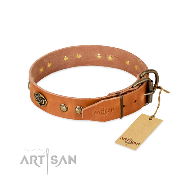 Durable traditional buckle on full grain natural leather dog collar for your canine