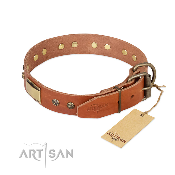 Leather dog collar with strong buckle and studs