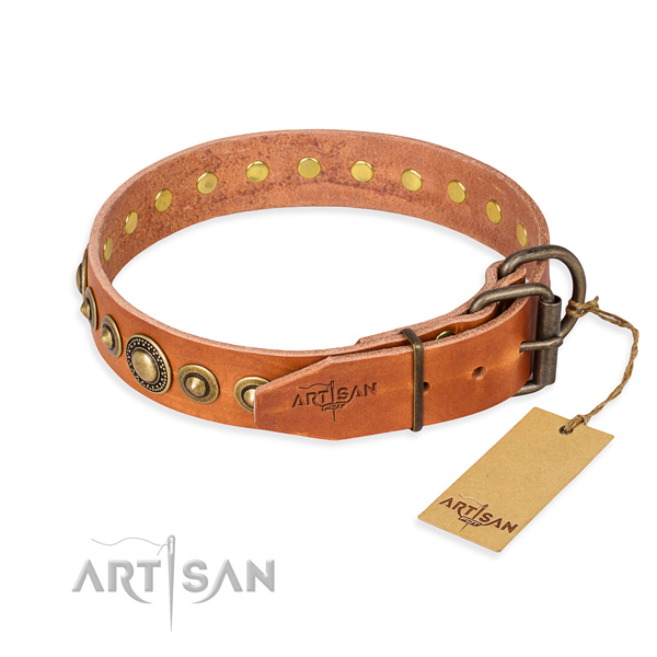 High quality full grain leather dog collar made for basic training