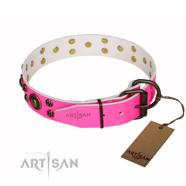 Comfortable wearing embellished dog collar of finest quality leather