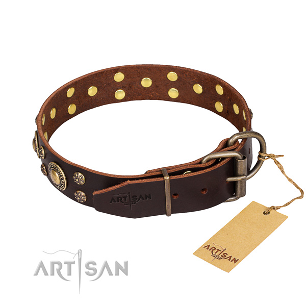 Daily walking embellished dog collar of finest quality full grain genuine leather