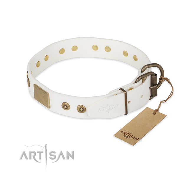 Rust-proof fittings on natural leather collar for stylish walking your doggie