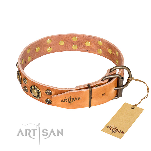 Stylish walking decorated dog collar of fine quality full grain leather